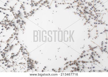 Round Frame Of Lavender Flowers
