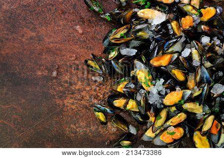 Mussels, molluscs, seaweed, sea plants, ice on old vintage rustic metal background. Top view, copy space