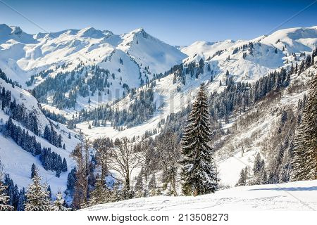 Remote mountain winter landscape with deep snow and forest on clear sunny day. Allgaeu Alps, Bavaria in Germany.