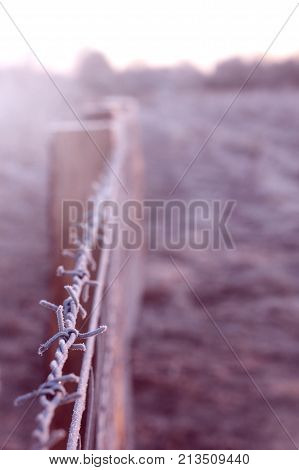 frosted barbwire on top of a fence on a dazzling bright sunny winter morning seperating two sectors - dangerous red light mood