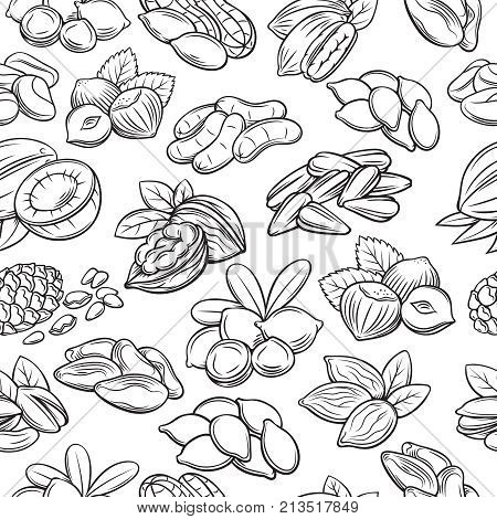 Vector seamless pattern with hand drawn nuts and seeds. Cola nut, pumpkin seed, peanut and sunflower seeds. Pistachio, cashew, coconut, hazelnut and macadamia. Illustration in sketch retro style.