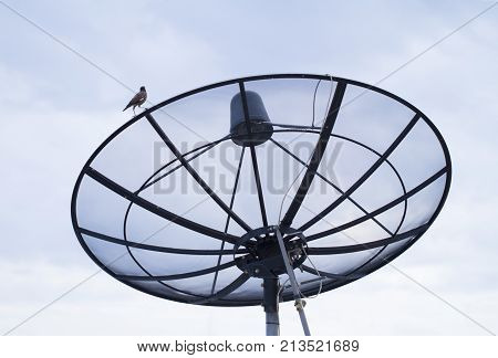 Satellite dish transmission data with blue sky background