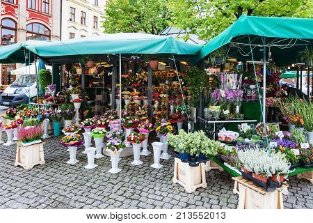 Flower Stall On Plac Solny Square In Wroclaw City