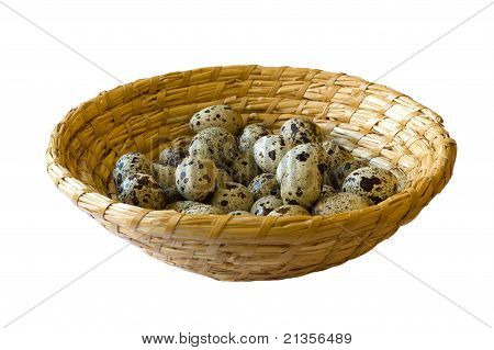 Quail Eggs In Wicker Basket Isolated On White Background