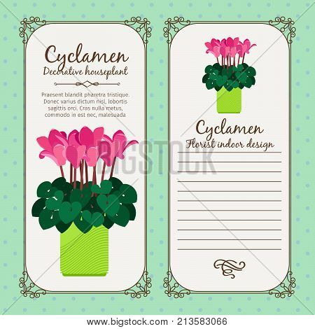 Vintage label template with potted flower cyclamen, vector illustration
