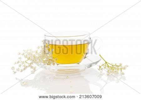 Healthy Medicine elderberry flower Tea on white background. Elderberry flower and tea in cup. Natural remedy.