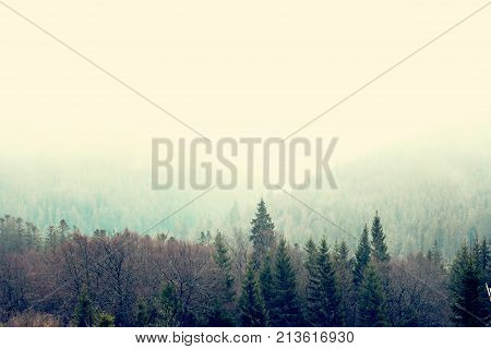 Mountain landscape in the fog. house in the mountains. Carpathian mountains. Majestic view on beautiful fog mountains in mist landscape. Dramatic unusual scene. Travel background. Exploring beauty world. Carpathian mountains. Ukraine. Europe.