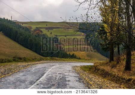 Old Countryside Road On Rainy Day