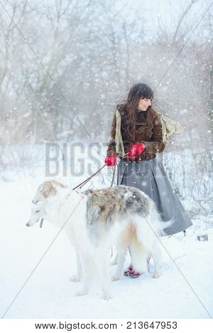 Christmas Walk. Beautiful Surprised Woman In Winter Clothes With Greyhound Dogs Graceful Winter Back