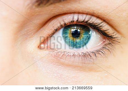 Female blue eye macro close-up iris look into camera