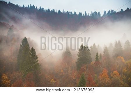 Clouds Of Fog At Rainy Day In Mountains.