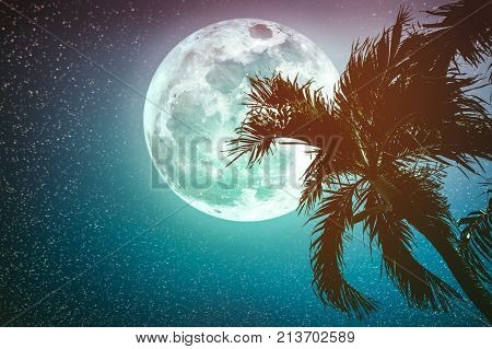 Supermoon with many stars. Beautiful night landscape of sky with full moon behind betel palm tree outdoor in gloaming time. Serenity nature background. Cross process. The moon taken with my camera.