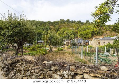 View of a large communal veggie garden still alive in the rural village of Rio de Onor Braganca Portugal