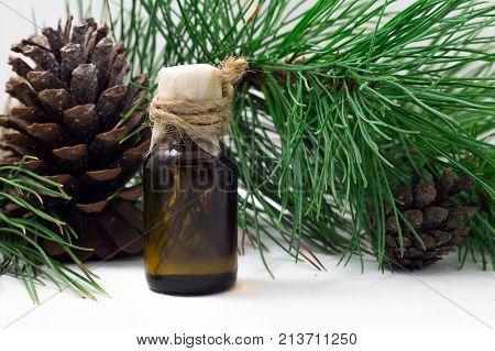 A Glass Of Cedar Wood Oil. Cedar Wood Background