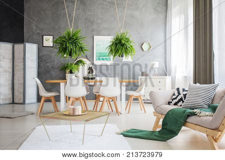 Multifunctional Apartment With Ferns