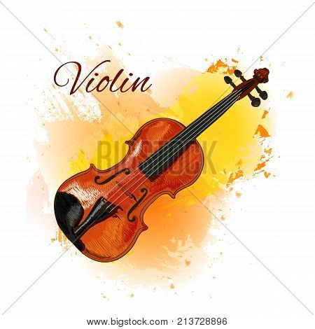Violin detailed sketch, colored violin on paint splash background. Isolated on white VECTOR illustration with inscription 'Violin'. Yellow backdrop