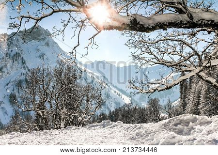 Snow mountains winter landscape. Sun shines through snow covered tree branches. Allgaeu Alps, Bavaria in Germany.