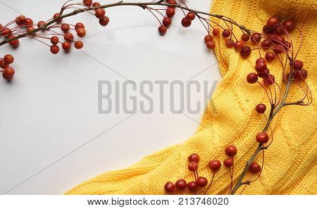 White background with branches with small apples and yellow sweater, close-up, Top view