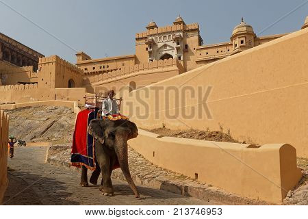 Jaipur, India, October 27, 2017 : Riding Elephants Up To The Amber Palace Complex. Amber Fort Is The