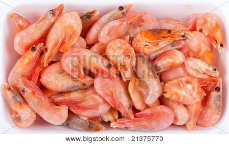 Frozen Red Shrimps In White Plastic Box