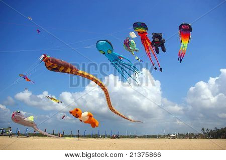 Colorful Kites On The Beach
