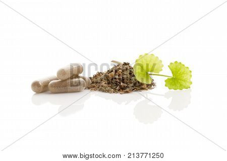 Dried and fresh gotu kola leaves and gel capsules isolated on white background. Asiatic pennywort.