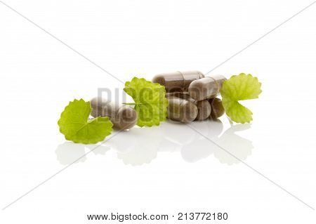 Gotu kola Asiatic pennywort. Gel caps and green leaves isolated on white background. Nutritional supplement.