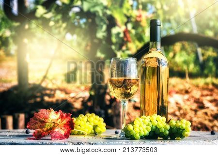 Bottle and full glass of white wine over vineyard background. Wine tasting and gastronomy concept