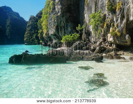 Small Beach At Phi Phi Leh Island, Krabi Province, Thailand