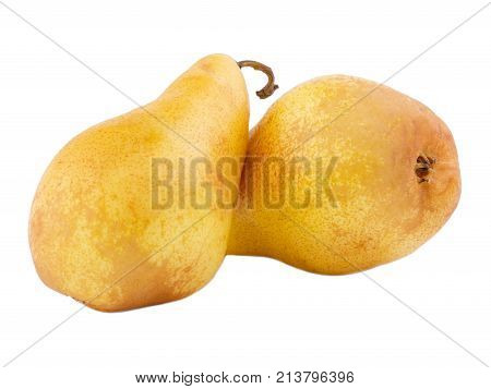 Two pears of yellow, juicy, useful one cloe-up on one on white isolated background