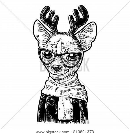 Dog deer with glasses scarf horns coat. Vintage black engraving illustration for poster. Isolated on white background