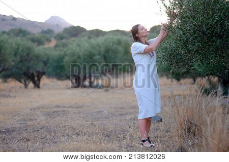 Young beautiful girl in a dress near the olive tree