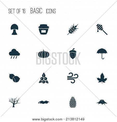 Includes Icons Such As Timber, Gingham, Champignon And Other.  Autumn Icons Set.