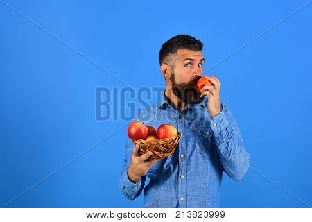 Guy Eats Homegrown Harvest. Man With Beard Holds Apples