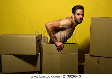Guy With Naked Torso Sits Among Boxes. Delivery And Moving
