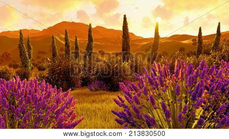 Lavender fields in Toscany - Italy 3d rendering