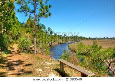 Bench Overlooking Marsh