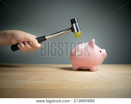 Piggy bank savings investments currency concept : A hand holding a hammer which is raised above a pink sad piggy bank with a shocked and apprehensive facial expression.