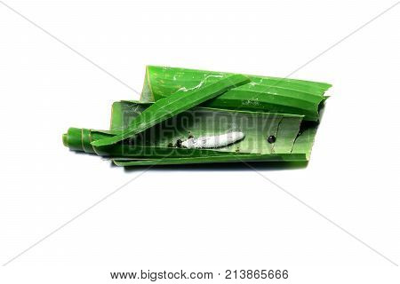 Life Cycle Of Butterflies.the Larva (worm)of Butterfly In Banana Leaves On White Isolated Background