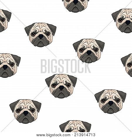 Seamless pattern with pug heads on white background. Backdrop with little cute lap dog or pet animal of toy breed. Hand drawn realistic vector illustration for wallpaper, fabric print, wrapping paper