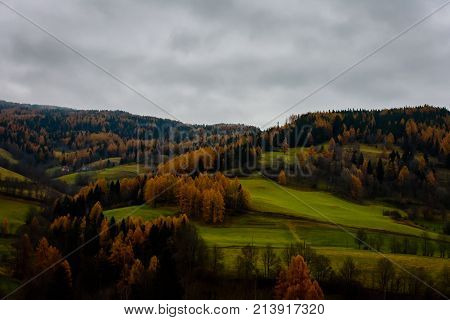 hill view in the alps in autumn