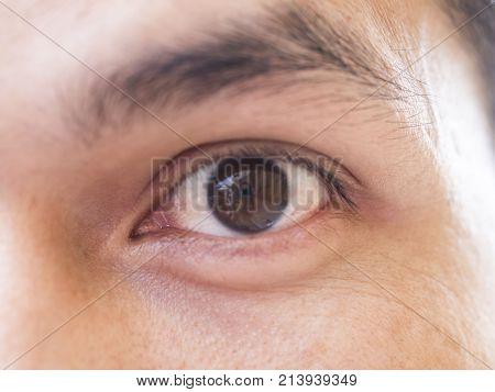 close up big human eye, looking  gaze