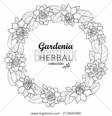 Vector outline Gardenia flower wreath with ornate foliage in black isolated on white background. Bunch with tropical fragrant plant Gardenia in contour style for summer design and coloring book.