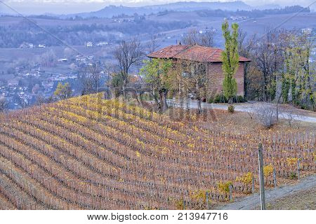 A farm and its vineyards in the hilly region of Langhe (Piedmont, Northern Italy); world famous for its valuable red wines (Barolo and Barbaresco first), Langhe Monferrato and Roero are UNESCO World Heritage Site since 2013.