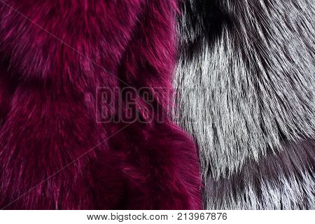 Artificial fur for texture or background. Eco friendly fashion concept. Luxury and elegant fluffy clothes. Dyed furry coat in pinky purple and grey color close up.