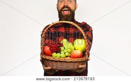 Farmer With Excited Face Presents Apples, Grapes And Cranberries.