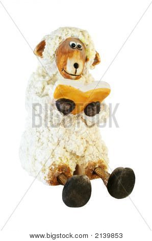 Sheep Isolated With Book