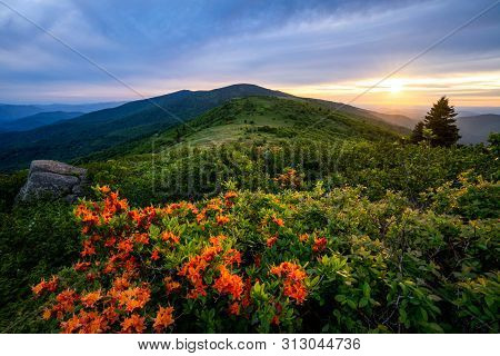 A Peaceful Evening As The Sun Sets Over The Roan Highlands Along The Appalachian Trail