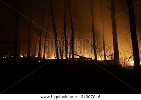 Brush fire at night