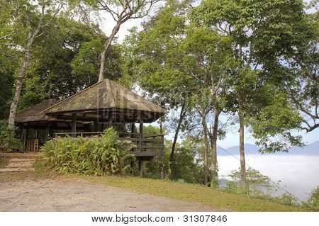 Pavilion and mist on hill side and green nature